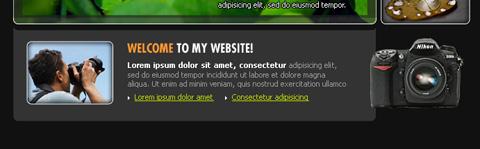 Create Photo Portfolio Web Layout in Photoshop CS3