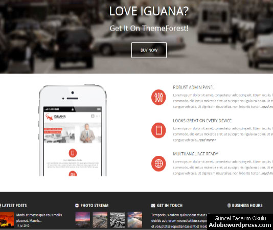 Iguana WordPress Teması