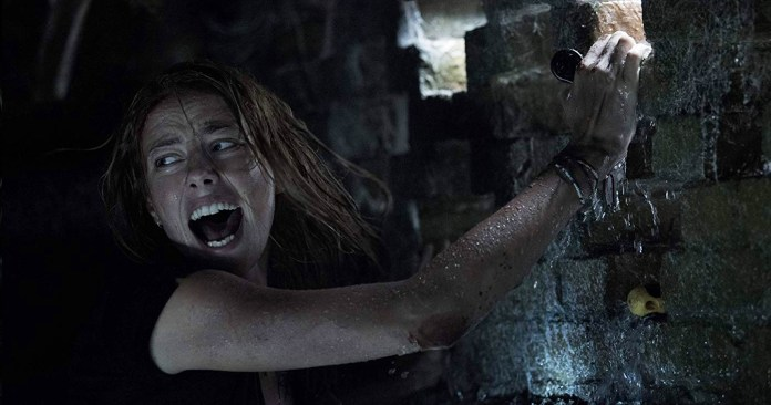 """Movie Review: Thriller Film """"Crawl"""" Serves Up Real Scares with A Crazy Storm, An (Almost) Empty House and Some Killer Alligators"""