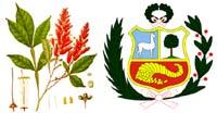 La Quina y el Escudo Nacional