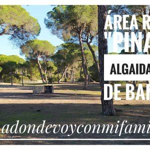 area recreativa pinar de la algaida adondevoyconmifamilia portada