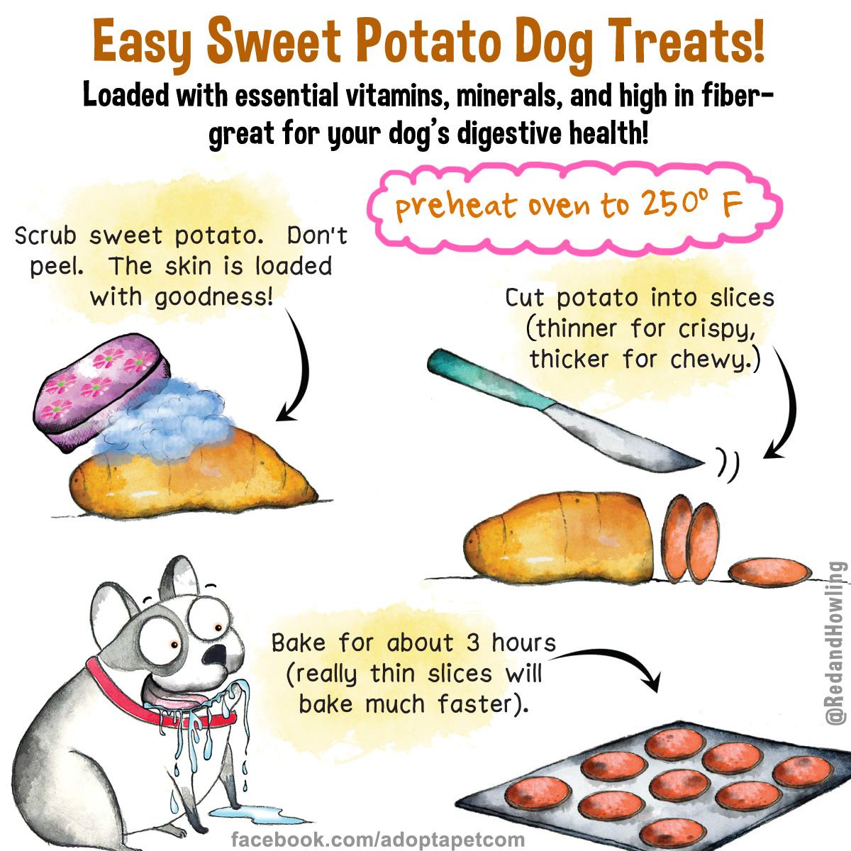 New Cartoon Sweet Potato Dog Treats Adoptapet Blog