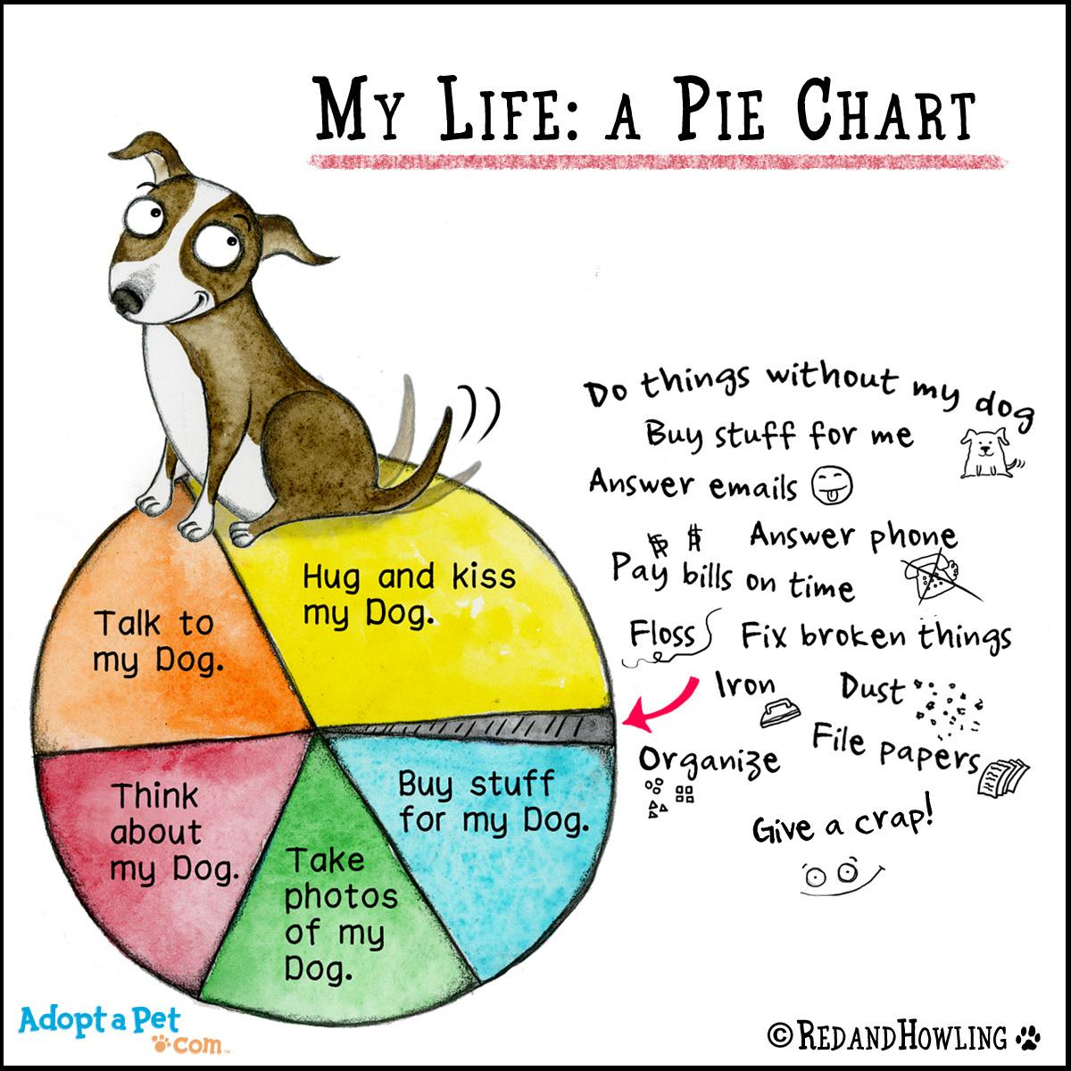 Image of: Therapy Piechart Brandtwriting Adoptapetcom Blog New Cartoon Pie Chart Adoptapetcom Blog