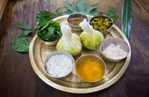 Panchakarma Therapy, Procedure, and Advantages