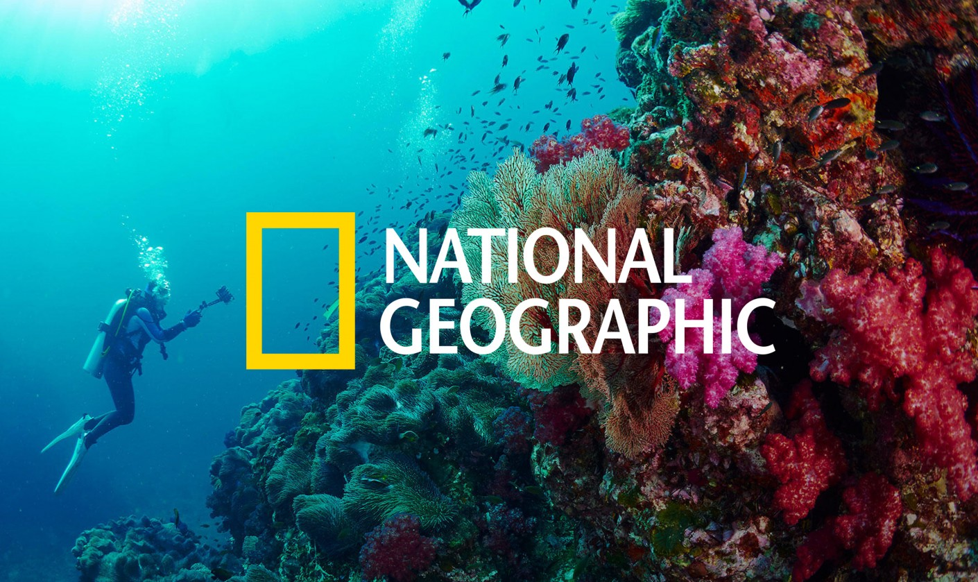 National Geographic, a content driven brand