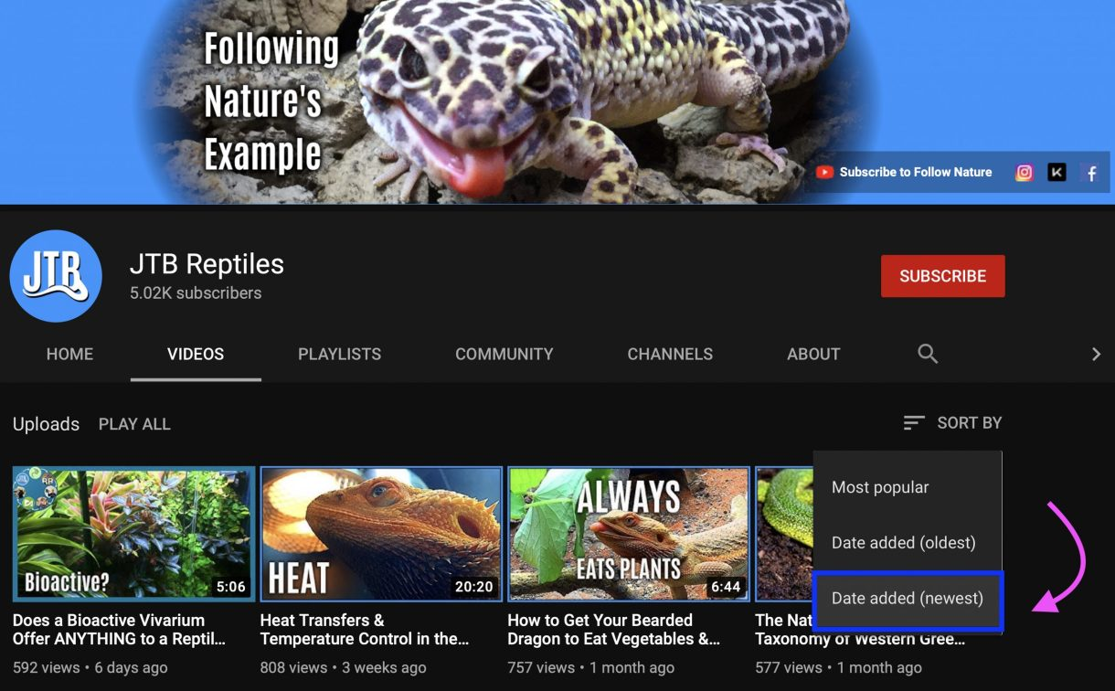 Sort By Newest YouTube Videos