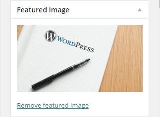 Wordpress Theme Image Add op