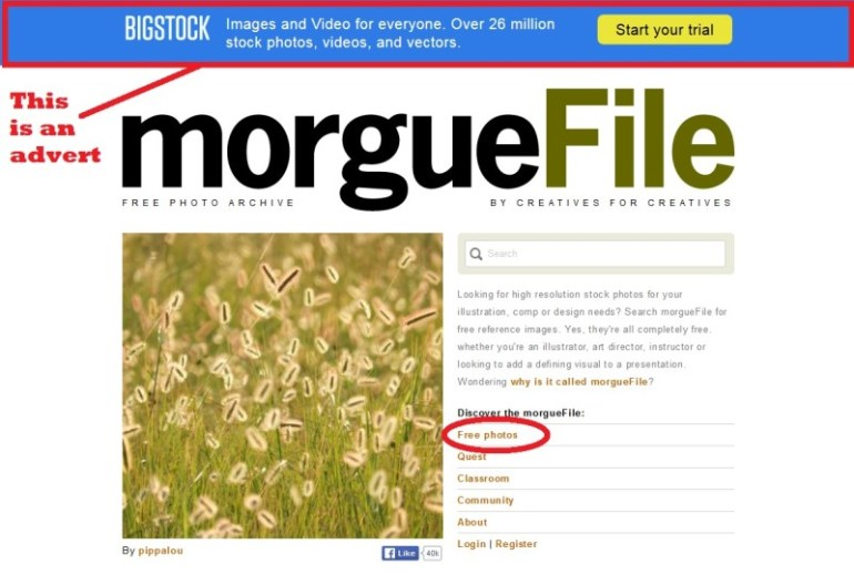 Morgue files