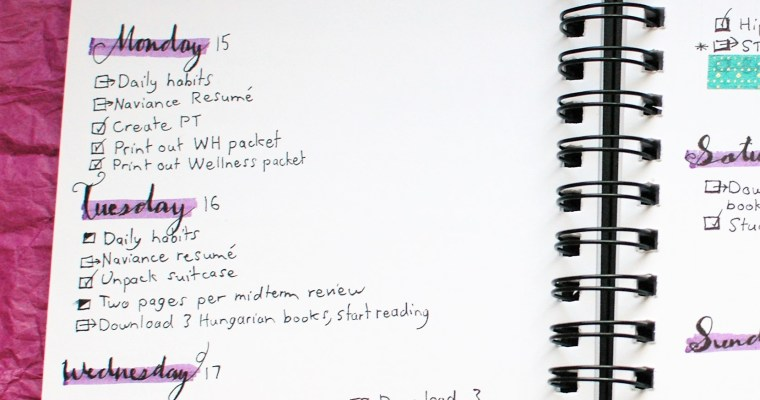 25 Bullet Journal Spread Ideas For Organizing Your Whole Life