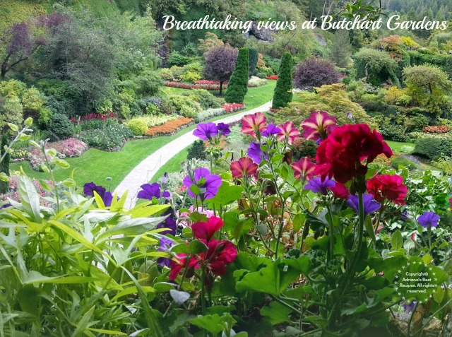 Breathtaking Views at Butchart Gardens  #MobileMemories #ad