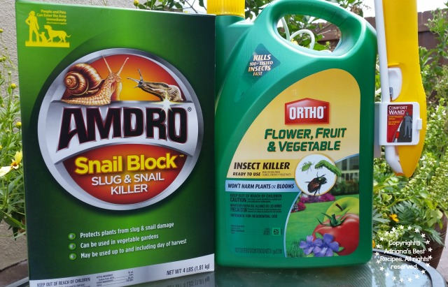 I am preventing bugs on my vegetable garden using the right products #MiJardinalidad #ad