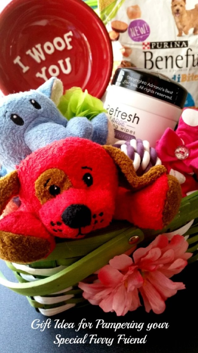 Gift idea for pampering your special furry friend #AmorBeneful #ad