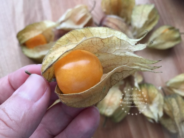 Discovering Gooseberries #ABRecipes