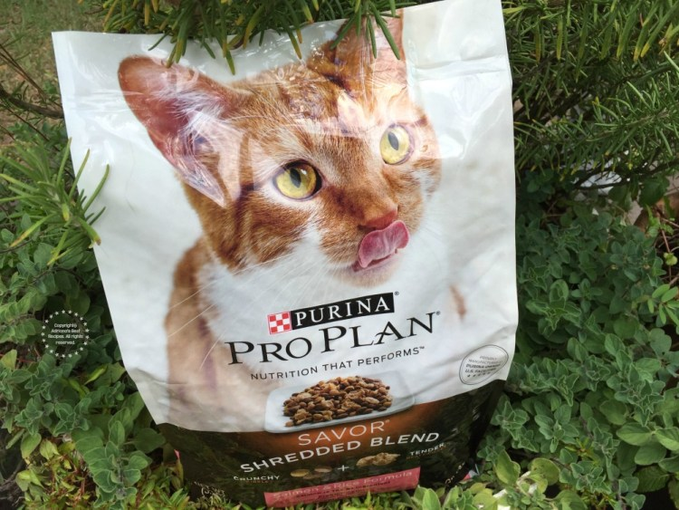 Spend $15 on any Purina Pro Plan product and SAVE $15 on your next purchase of 10.5 lbs or larger Purina Pro Plan Dry Cat or Dog Food or Litter by 731.
