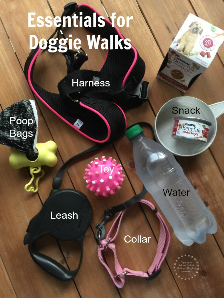Essentials for Doggie Walks