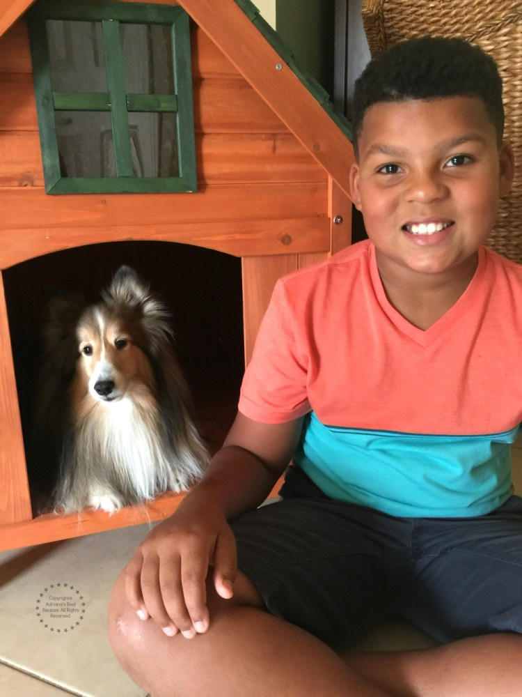 Our grandson proud contributor to building the best dog house and our client