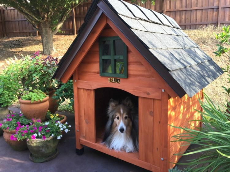 The best dog house for the best dog built with cedar wood and a sturdy roof while professional shingles.