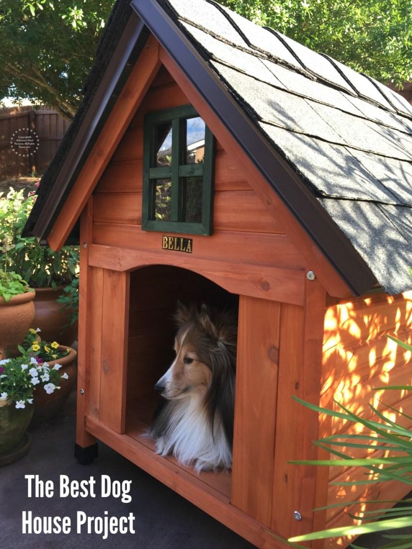 Una linda casita perruna construida con materiales de alta calidad y perfecta para completar el jardín como un elemento decorativo.