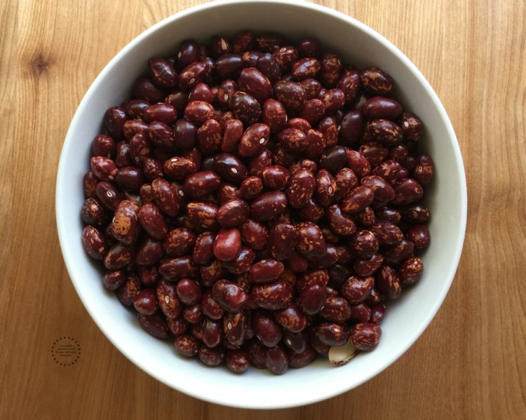 Cargamanto beans are also known as Cranberry, Roman, Madeira or Borlotti