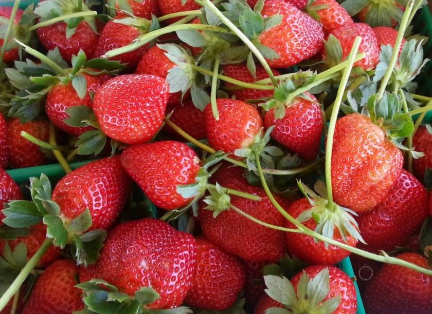 Las mejores recetas con fresas