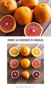 Conoce sobre los cítricos leyendo nuestra Guia de Naranjas 101
