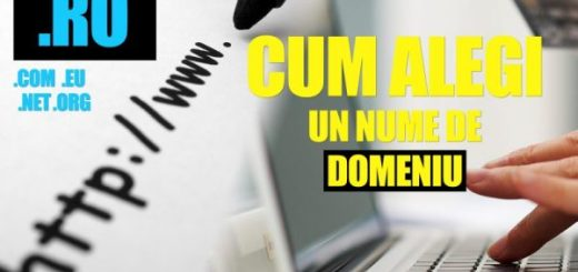 alege_nume_domeniu