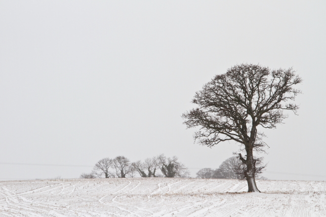 The Beast from the East & Landscape Photography