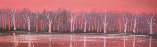 Lough Beg Reflections