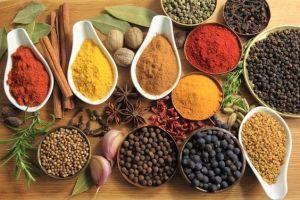 Spices Exporter - Adrianna Springs Chennai