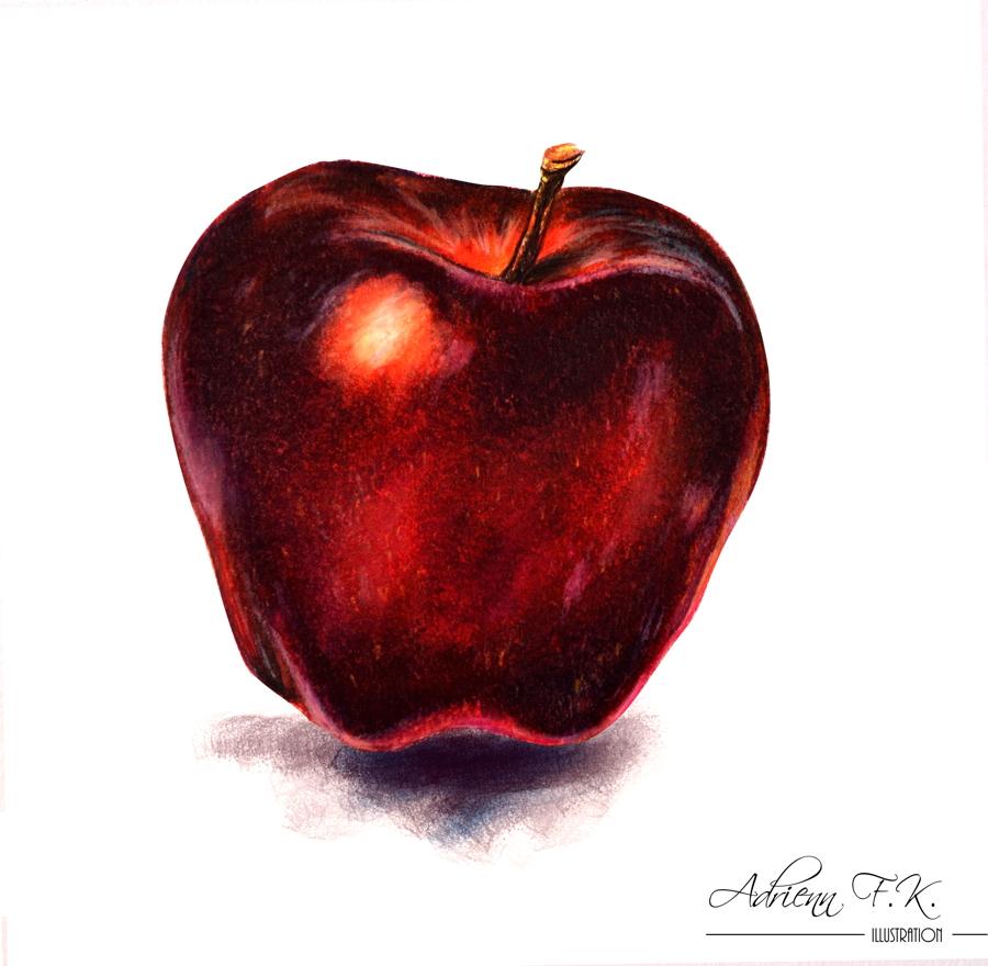 Apfel ///Farbstift