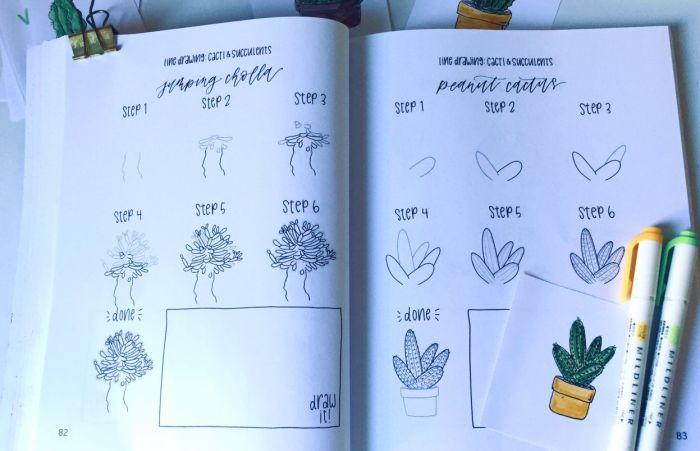 libro di mini tutorial per imparare a disegnare cactus e succulente