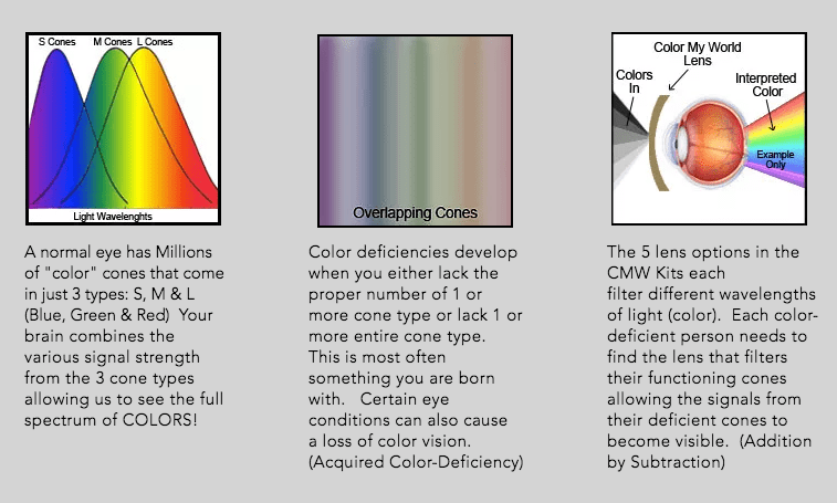 How do Color Blind glasses work