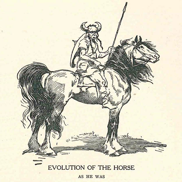Evolution of the Horse - As he was.
