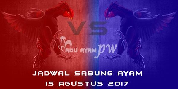 jadwal sabung ayam 15 Agustus 2017