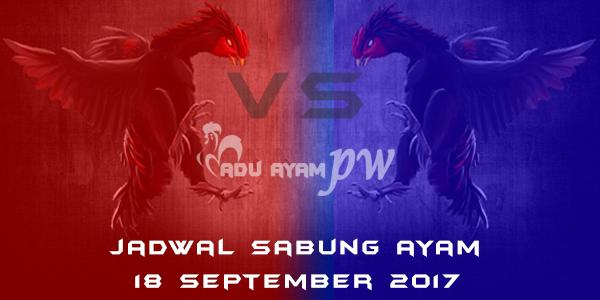 jadwal sabung ayam 18 September 2017
