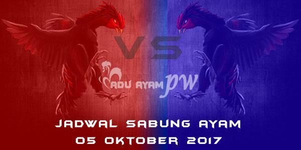 jadwal sabung ayam 05 Oktober 2017