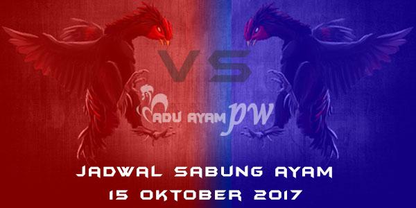 jadwal sabung ayam 15 Oktober 2017