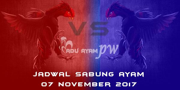 jadwal sabung ayam 07 November 2017