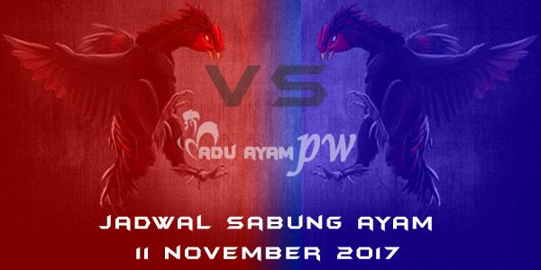 jadwal sabung ayam 11 November 2017