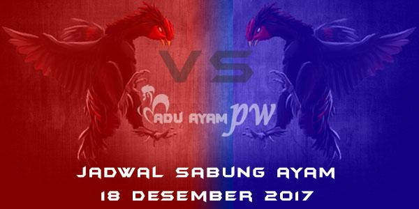 jadwal sabung ayam 18 Desember 2017