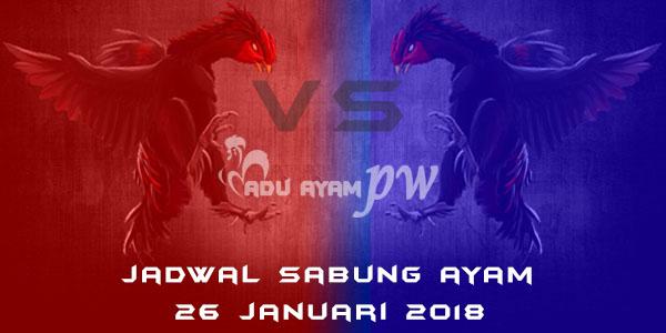 jadwal sabung ayam 26 Januari 2018