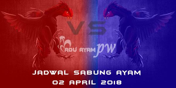 jadwal sabung ayam 02 April 2018