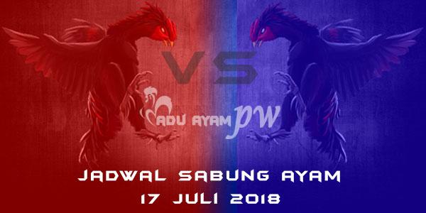 Jadwal Sabung Ayam 17 Juli 2018