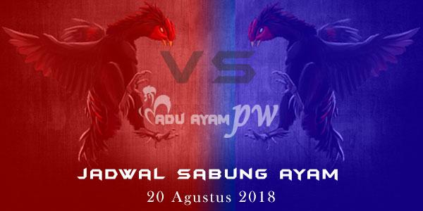 Jadwal Sabung Ayam 20 Agustus 2018