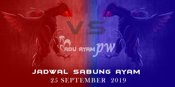 Daftar Sabung Ayam Jadwal Resmi 25 September 2019