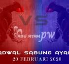 Prediksi Dan Jadwal Resmi Sabung Ayam 20 Februari 2020