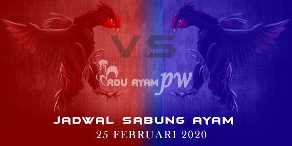 List Jadwal Sabung Ayam Indonesia 25 Februari 2020