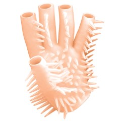Nasstoys Masturbating Waterproof Glove for Womens & Mens