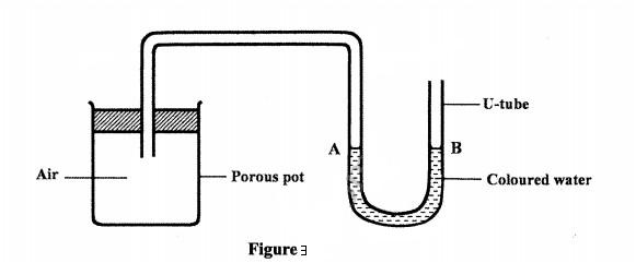 porous pot contained air
