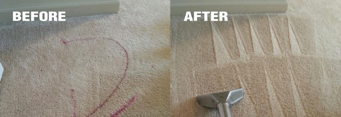 carpet cleaning western massachusetts